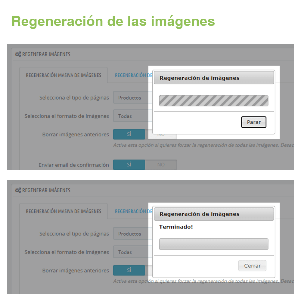 03_EXPL_lgregenerarminiaturas_ES_03