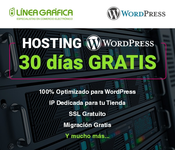 BannerLG_HostingWordpress